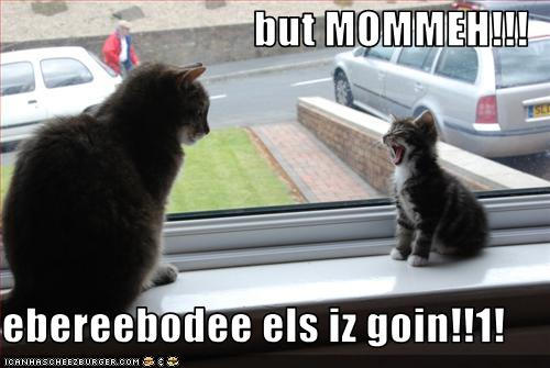 Baby cat complaining to mommy cat: but mommeh! ebereebodee els iz goin!!1!