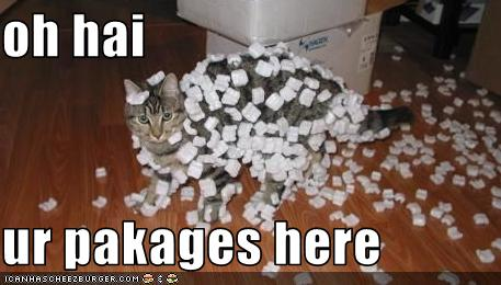 "Cat full with small styrofoam pieces; Caption: ""Oh hai, ur pakages here"""