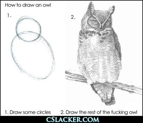 How to draw an owl: 1. Draw some circles, 2. Draw the rest of the fucking owl